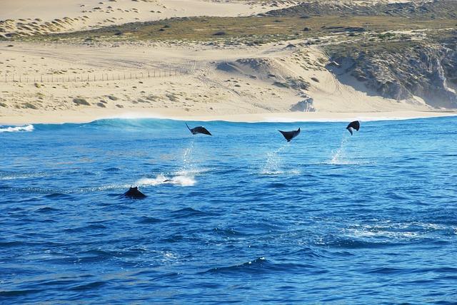 Blog Voyage Mexique : Los Cabos et ses souffleurs de verre
